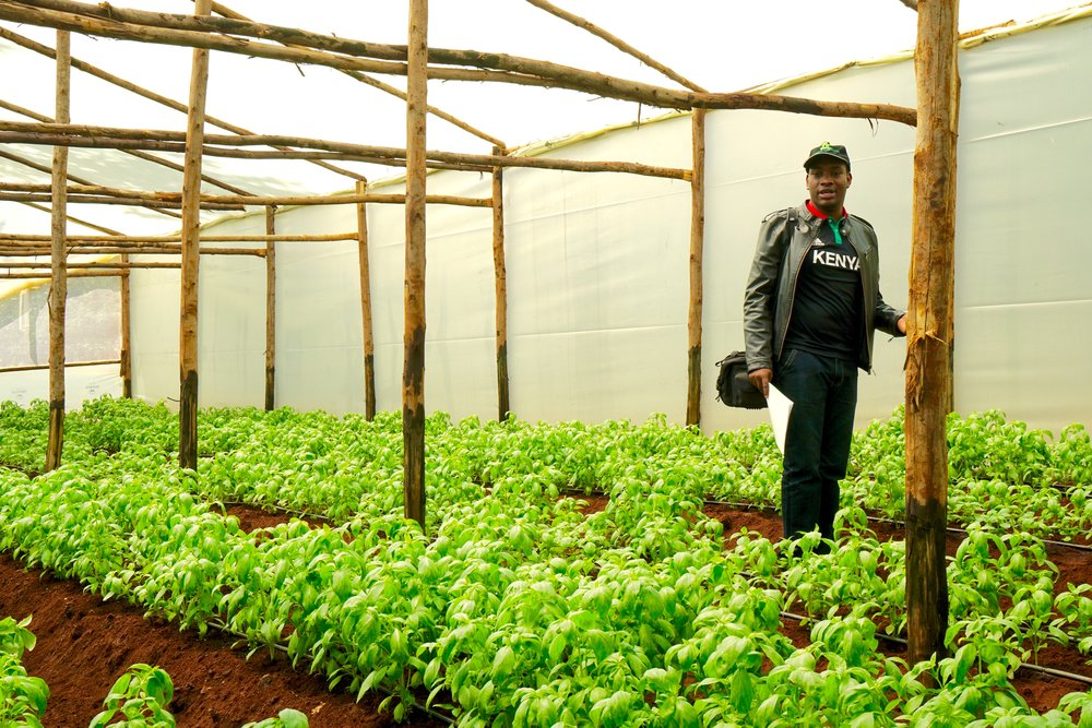 "Taita Ngetich, founder of Illuminum Greenhouses, is linking smallholder farmers with ""smart"" greenhouse technology, one of the many ways young entrepreneurs are boosting food security in their communities. Photo credit: Ellington Arnold"