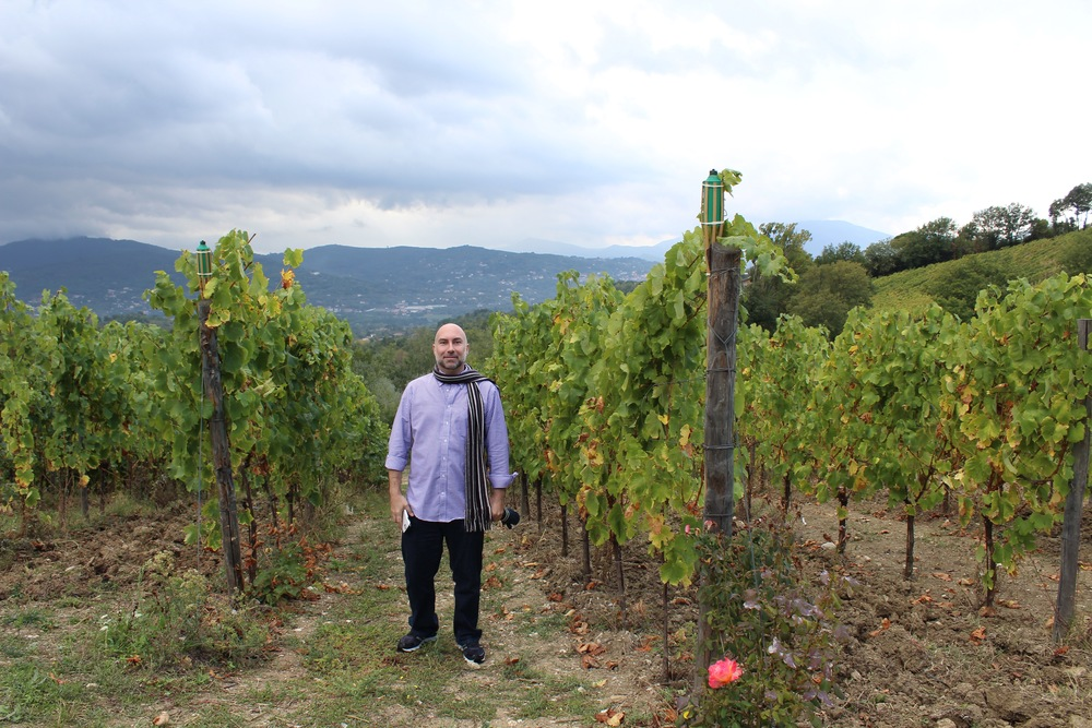 Christian Galliani in the vines at Feudi di San Gregorio in Irpinia.
