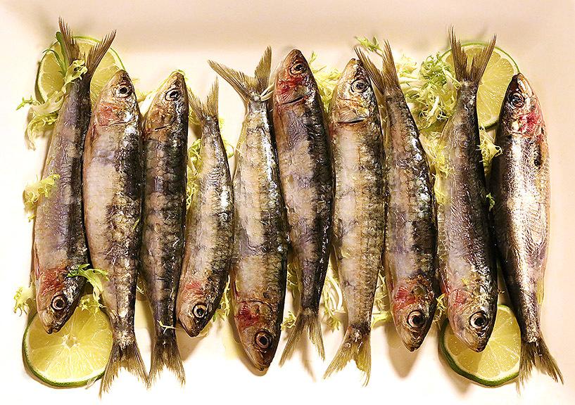 Sicilian sardines from Chef Melissa Muller's restaurant Eolo Sicilian Kitchen