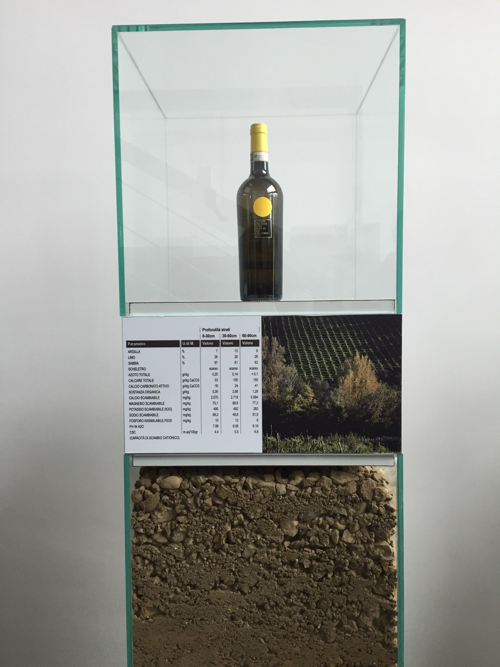 Display cases designed by Vignelli show the soil in which each varietal is grown.