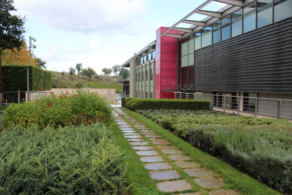Herb garden in front of Feudi di San Gregorio's tasting room designed by Hikaru Mori