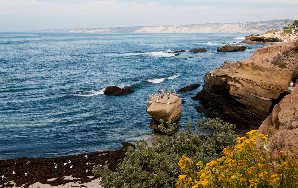 socal-coast-la-jolla.jpg