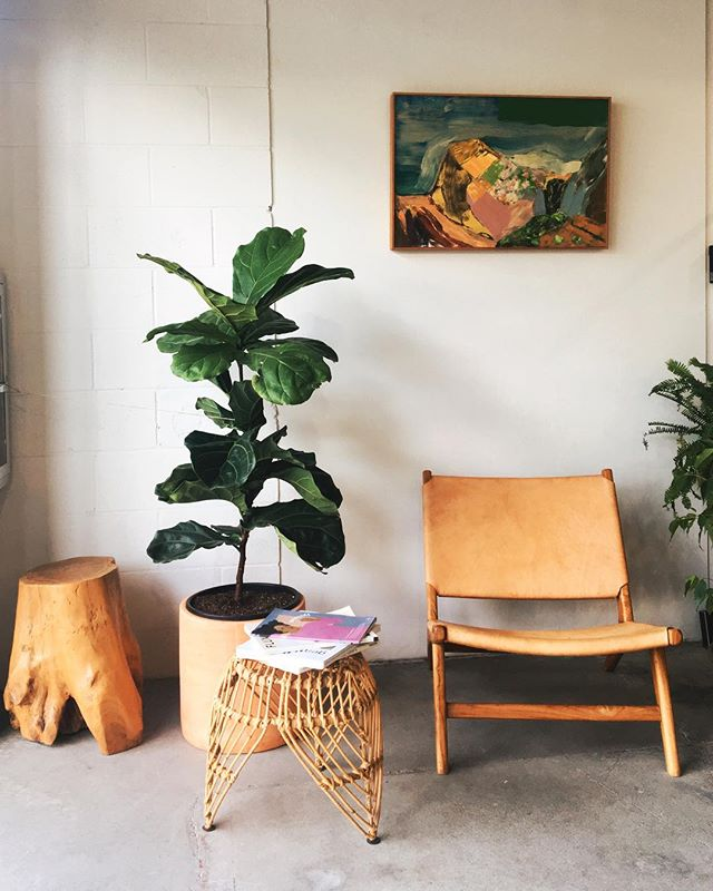 Taking note of Hawaiian interiors. Lots of white. Lots of plants and natural elements. A splash of color. I like it very very much.