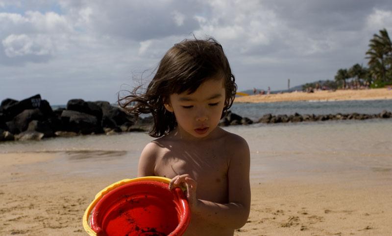 hawaii poipu beach antoine