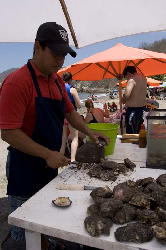 Cuastecomate Beach Oyster guy