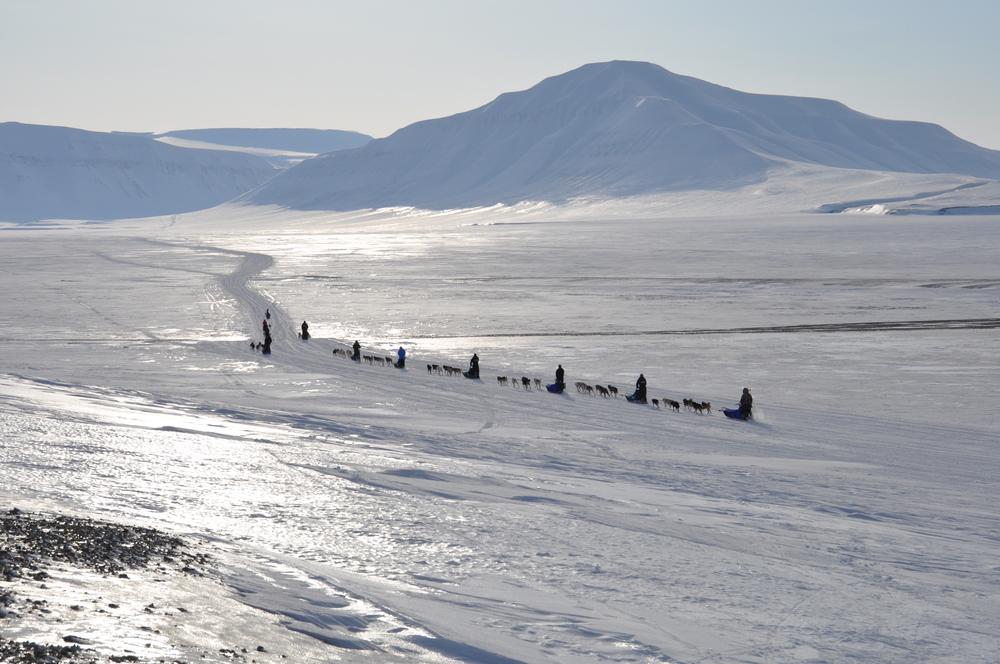 På tur fra Tempelfjorden, Svalbard