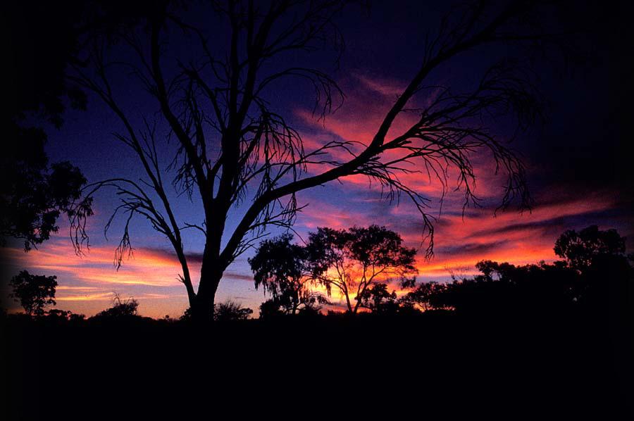 1 bond springs sunset small.jpg