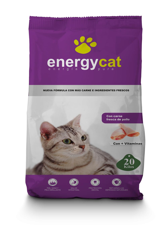 EnergyCat.jpg