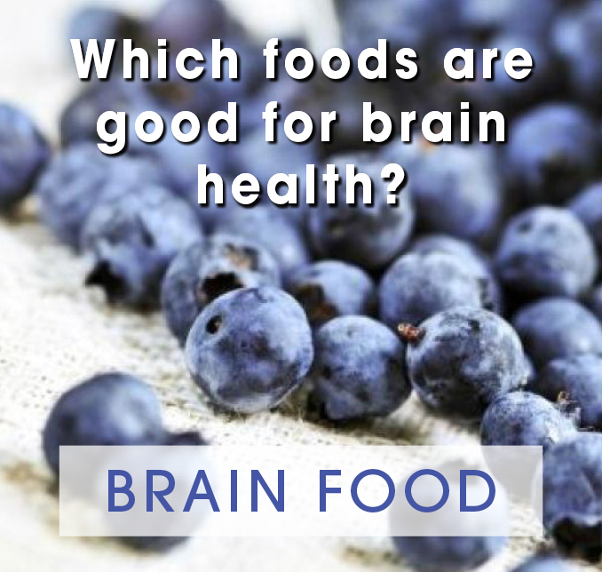 brain-food-nobrainr