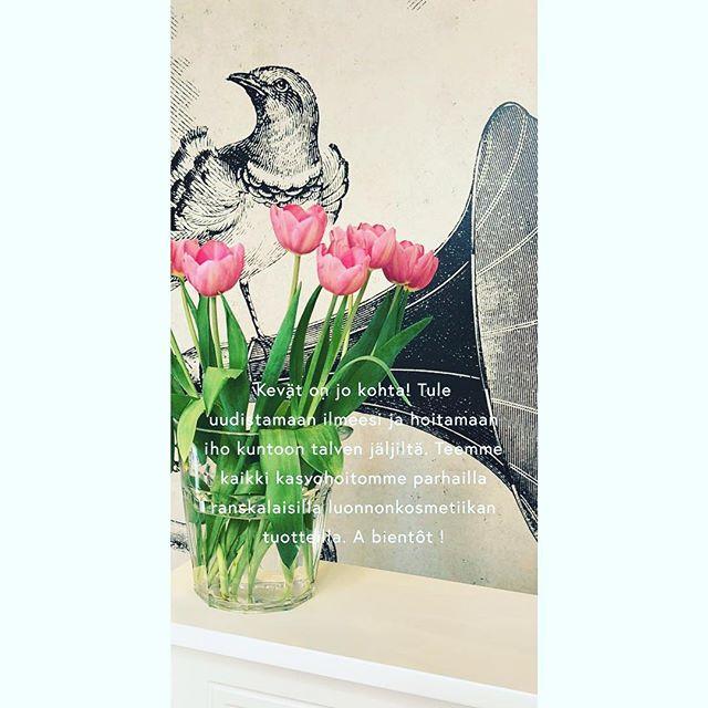Ihanaa naistenpäivää kaikille! 🌷🌷🌷 #patyka #luonnonkosmetiikka #absolution #organicskincare #organicbeauty #tulppaanit #ilonakauneussalonki #organiclife #beautysalon #springiscoming #internationalwomensday #naistenpäivä #🌷