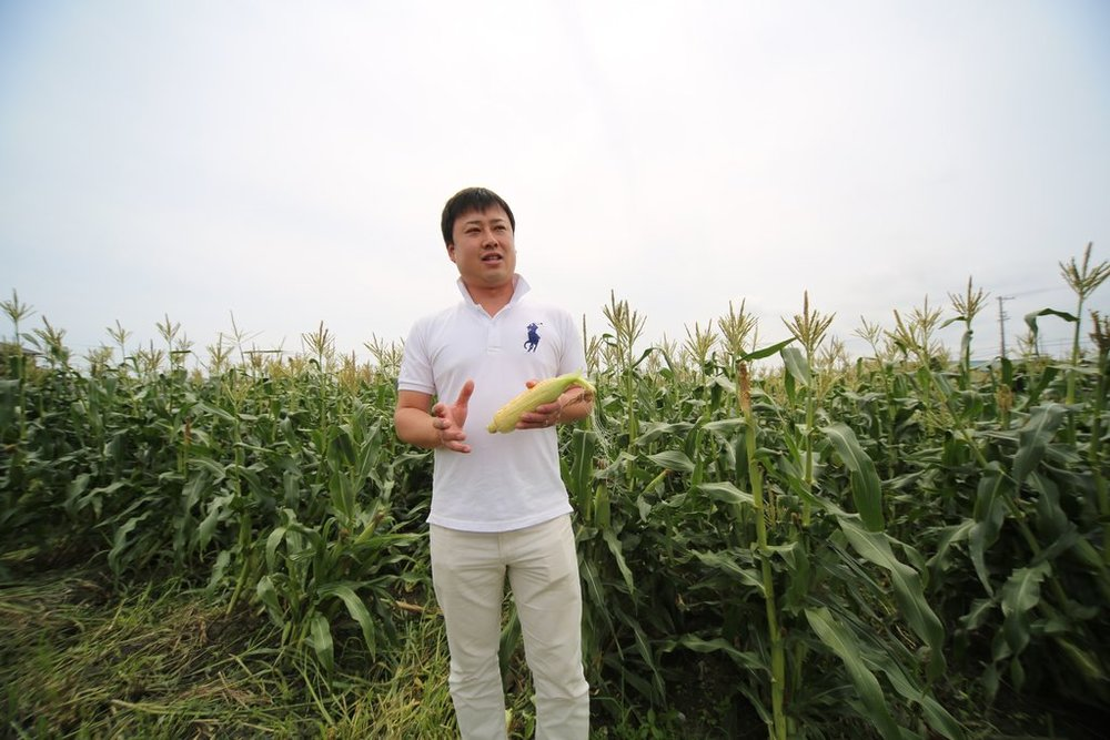 Ichikawa-san, the artisanal farmer of this corn, with his exceptional crops