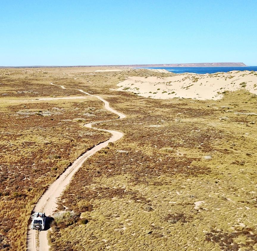 salt water Western Australi BG12
