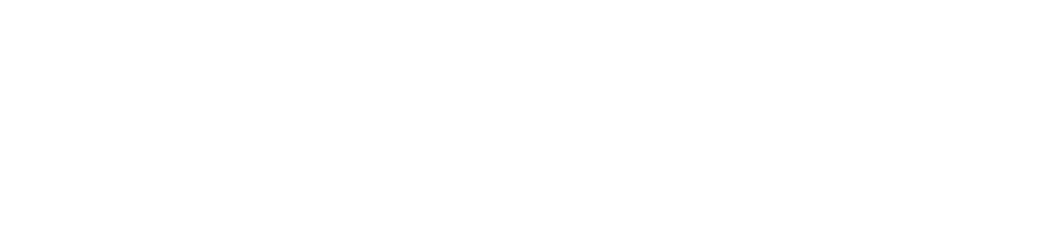Concorde Technology Group