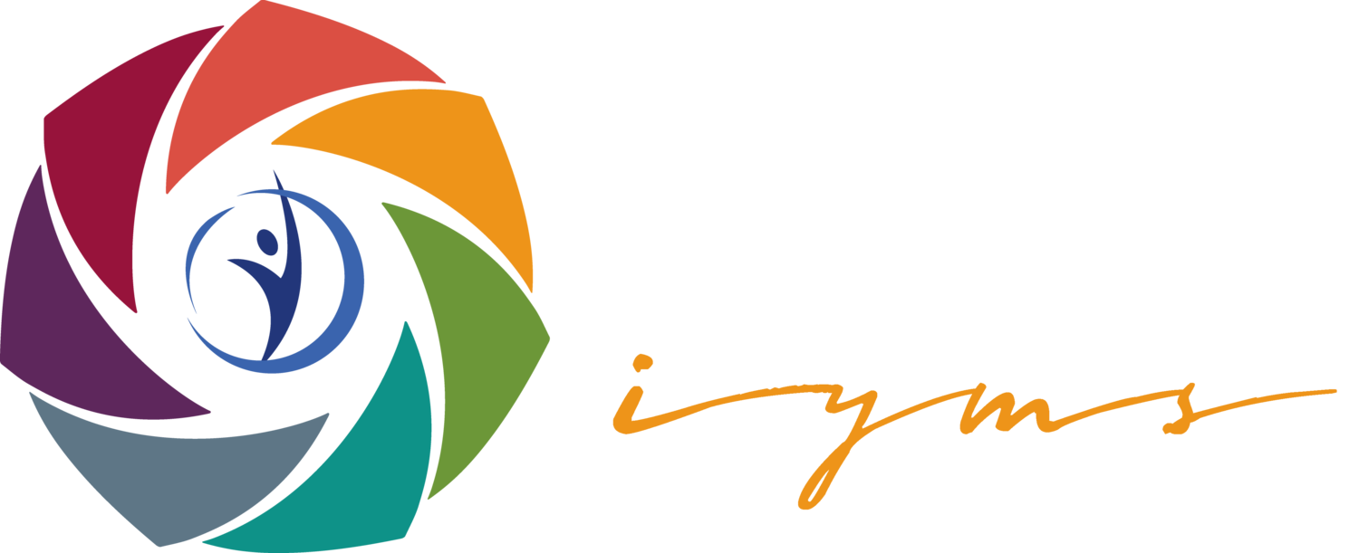 International Youth Media Summit