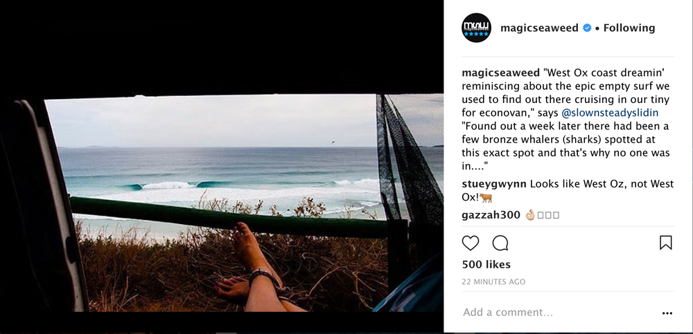 Australian van life views - magicseaweed
