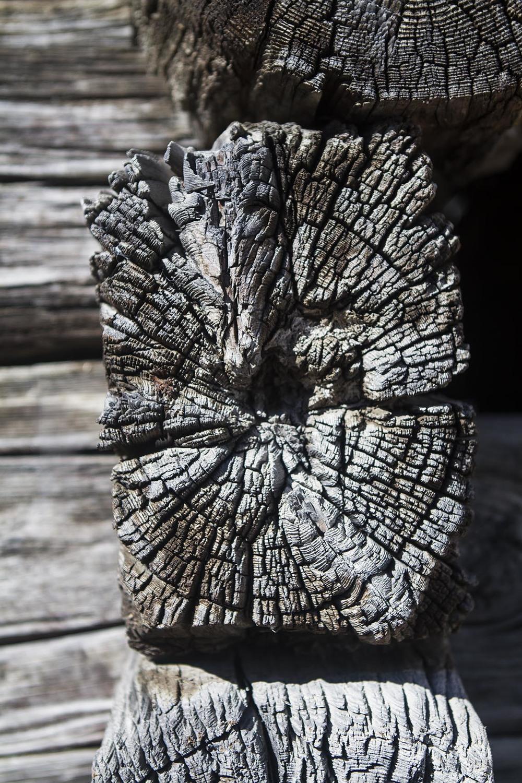 Holz_2.jpg