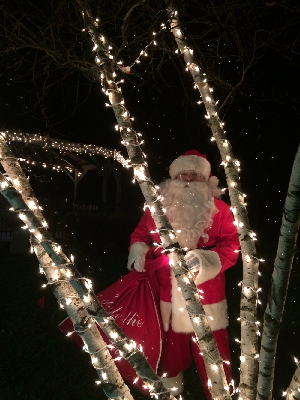 Santa with lights.jpg