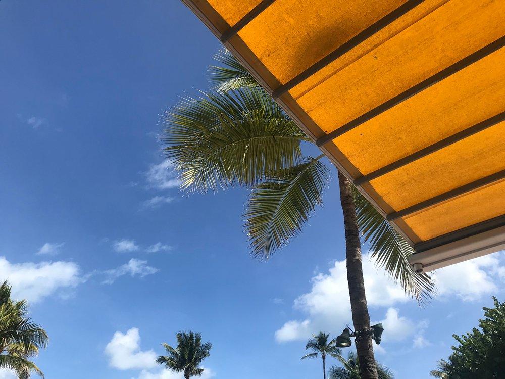 Sunny Florida -