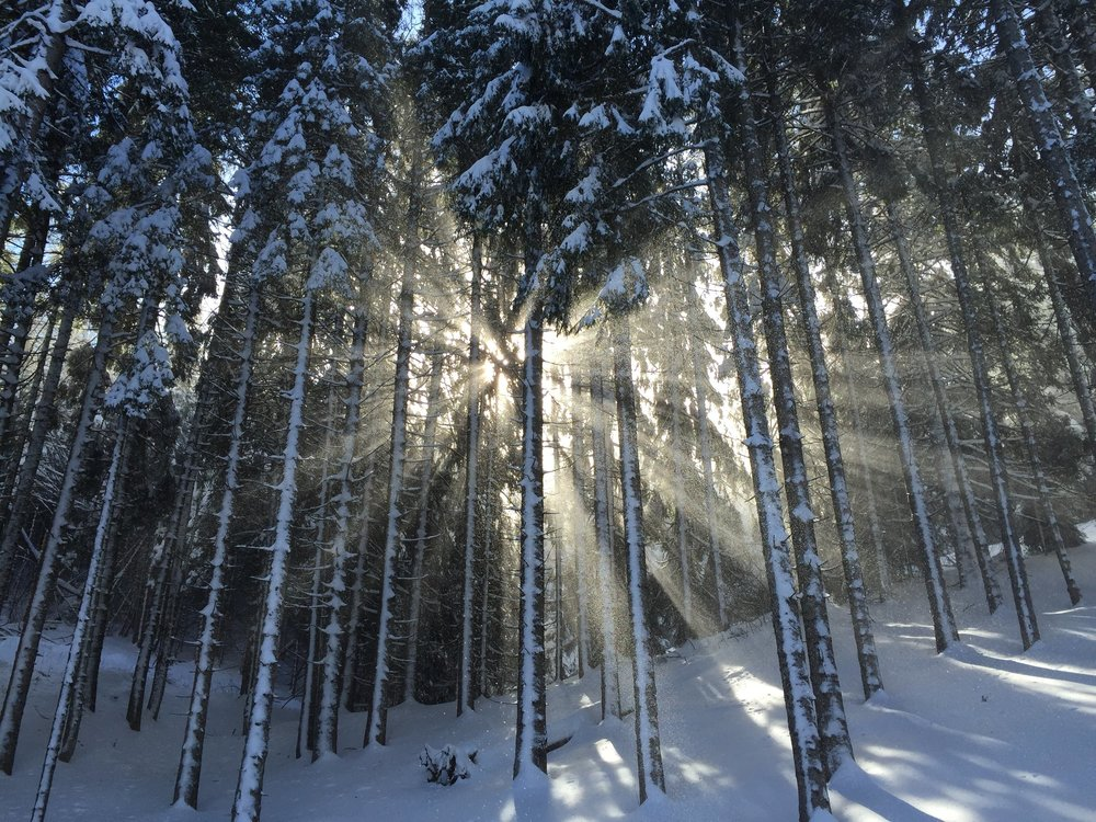 Bergen Winter Workshops Radiant Recharge