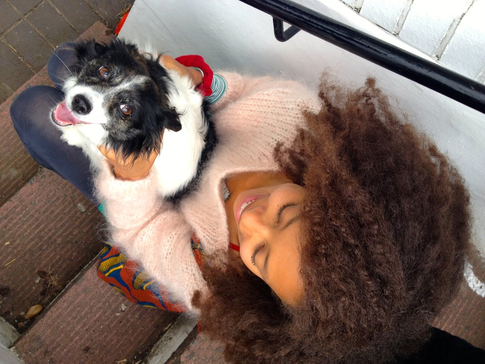 milly the dog life lessons dionne.space
