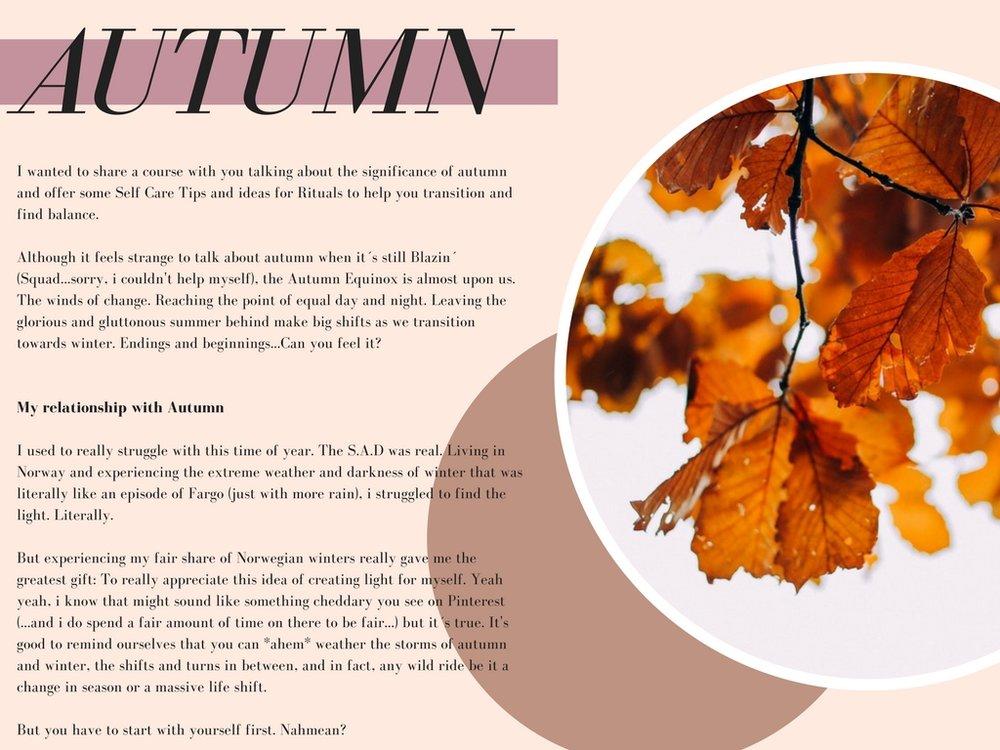 autumn 3.jpg