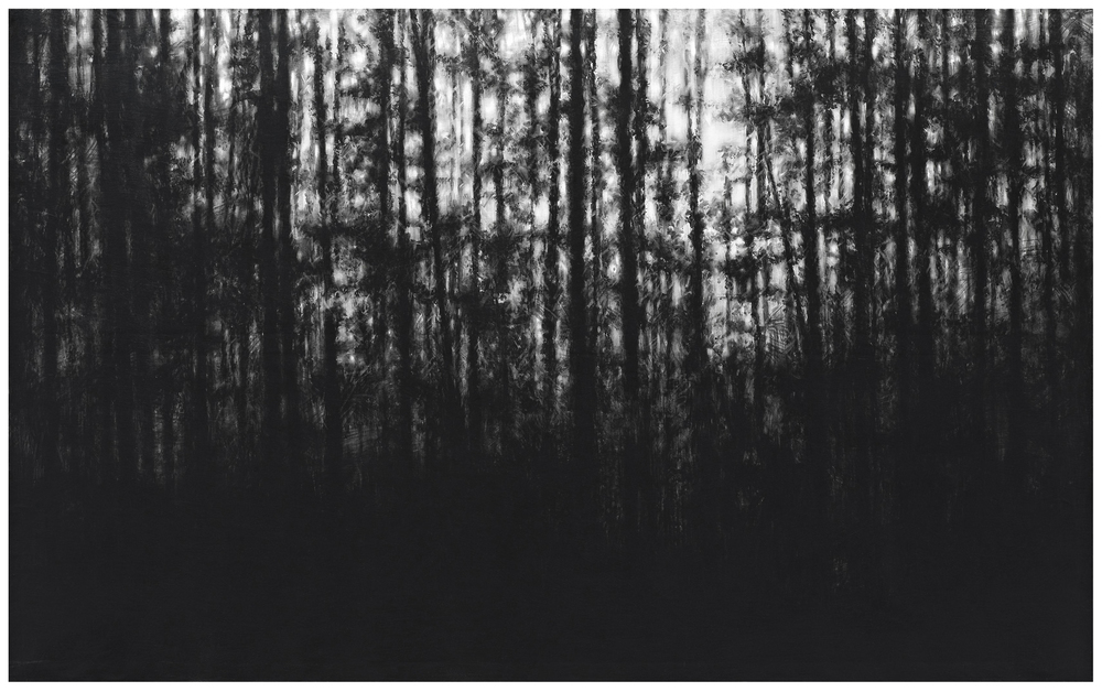 2012, charcoal on canvas, 125x200 cm.