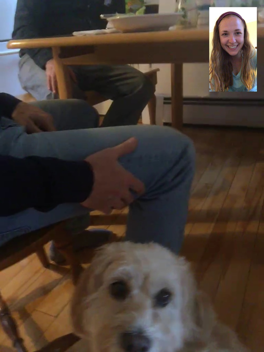 FaceTiming with Bella!