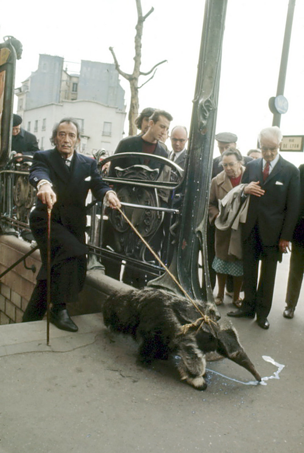 Salvador Dalí and his ant eater.
