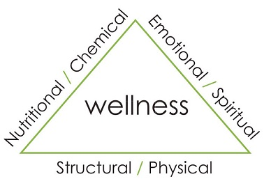 wellness-triangle.jpg
