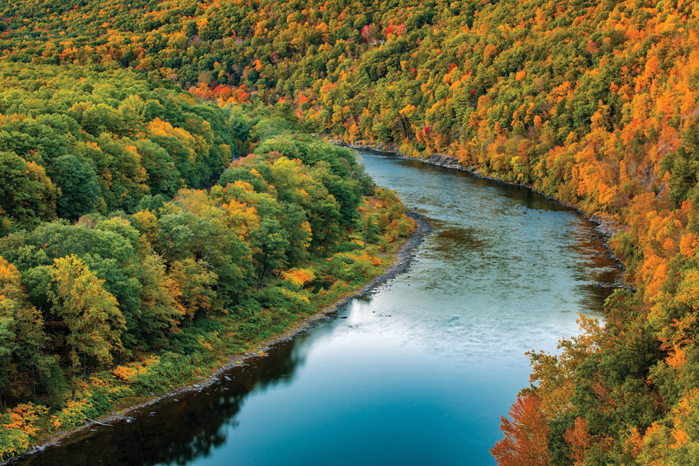 THE UPPER DELAWARE RIVER