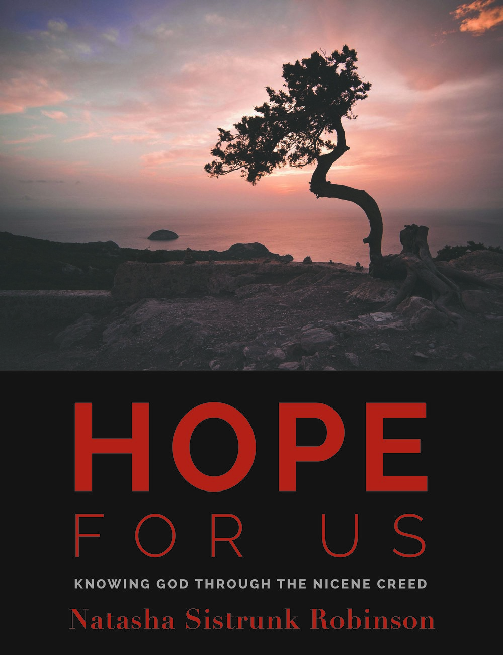 hope for us cover - final.jpg