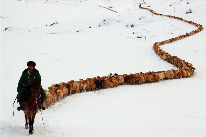 elsadreams :                                            elisamariamatei                                                                                                                       Kyrgyzstan. | ©suhbat.bozbala