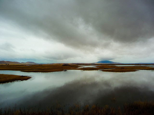 natureconservancy :      Rain - Klamath Basin National Wildlife Refuge  by  ex_magician  on Flickr.   lovely rain.