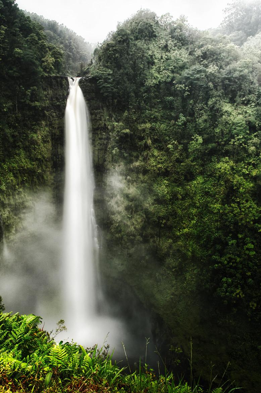 woodendreams :     Akaka Falls, Hawaii, US ( by James Forbes )