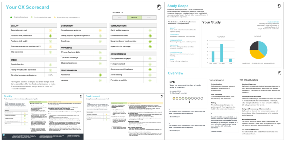 Secret Shopper Experience Evaluations  using our comprehensive success model to gather actionable insights, leading to an increase in customer experience.