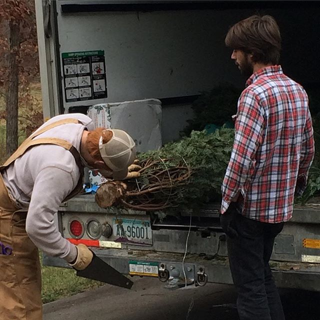 Raise the Tree founder James Trimble giving the Fraser Fir a fresh cut upon delivery #fraserfir #christmastree #christmas