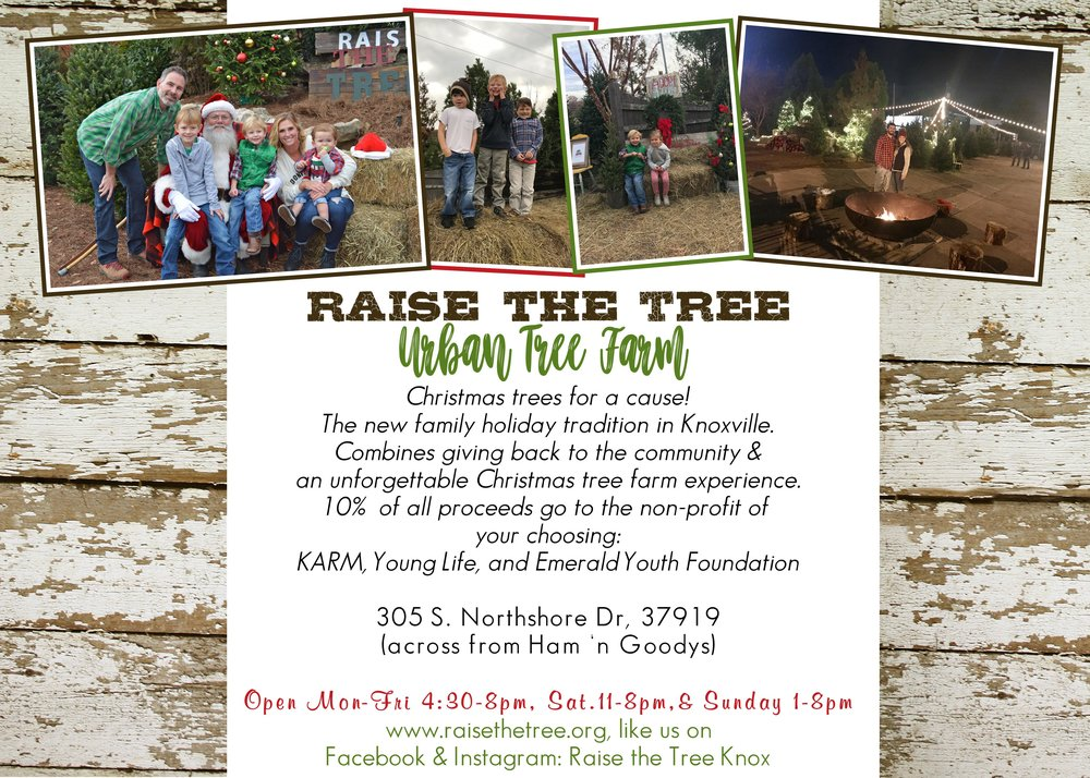 Raise the Tree 2017