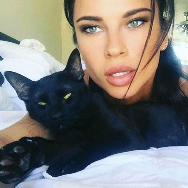 Love my baby @knightandshiningkat to the 🌙 and back.  #savannahcat #melanisticsavannah #catsofig