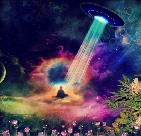 Enchanted Haze