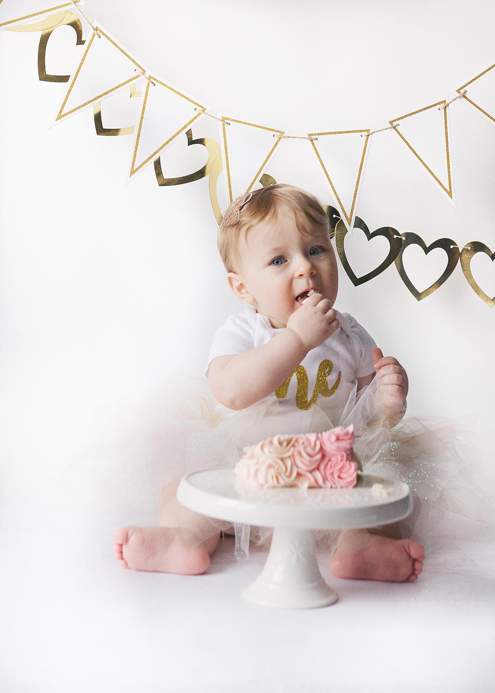 Edmonton Milestone Photographer_Ellie First Birthday 5.jpg