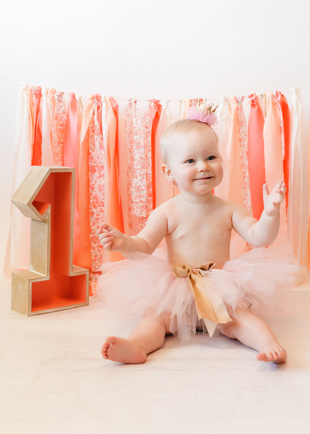 Edmonton Milestone Photographer_Lenna First Birthday 6.jpg