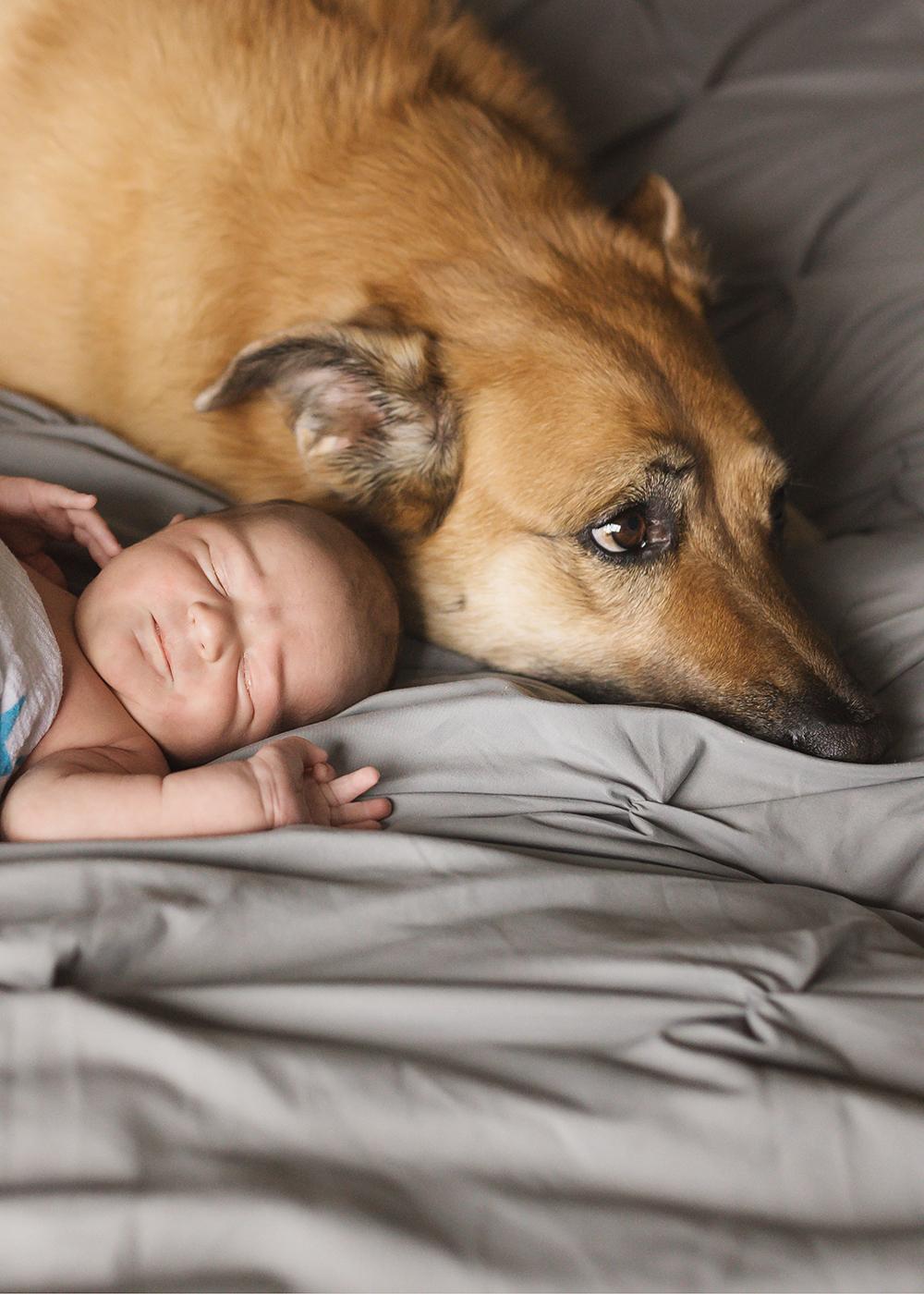 Edmonton Newborn Photographer_Baby Ryder Sneak Peek 7.jpg