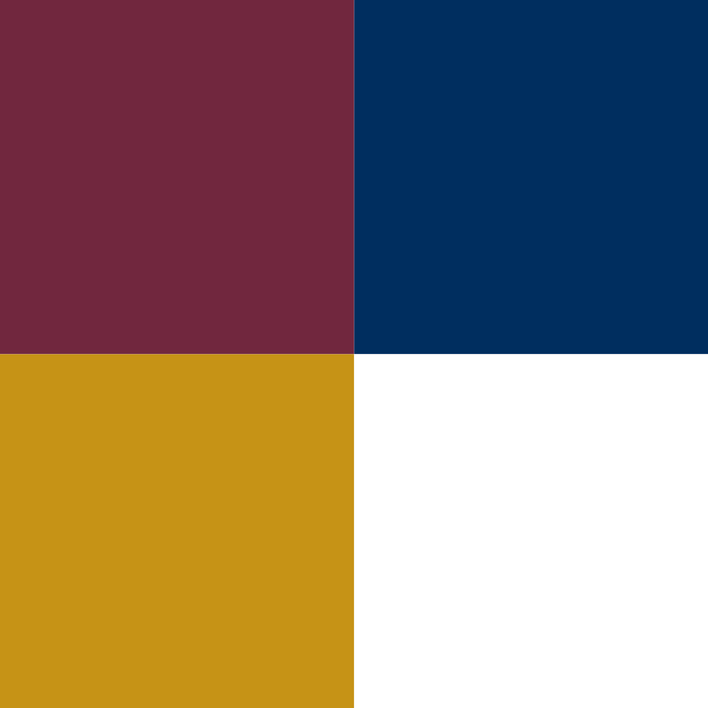 Color scheme nbyw.jpg