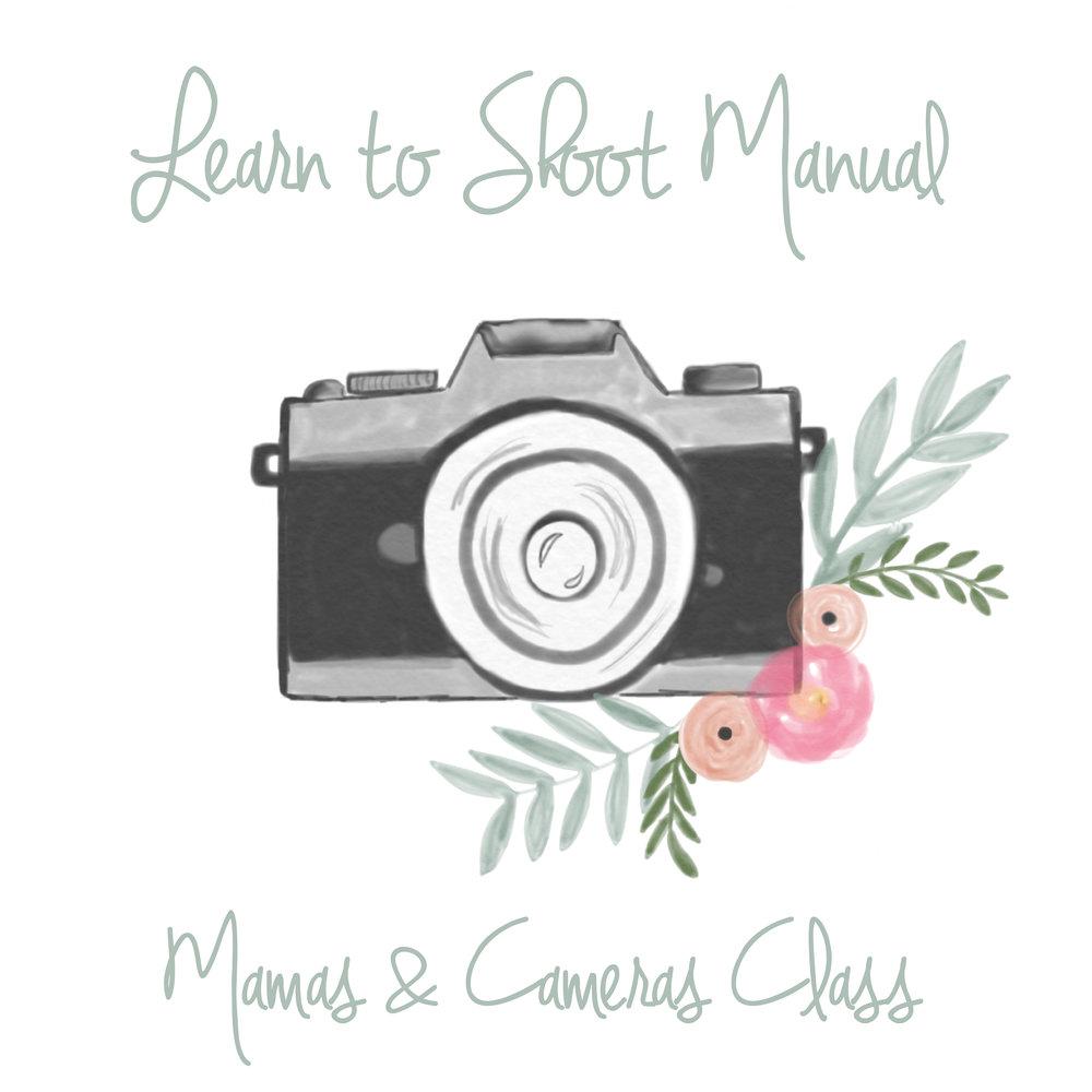 Mamas and Cameras.jpg