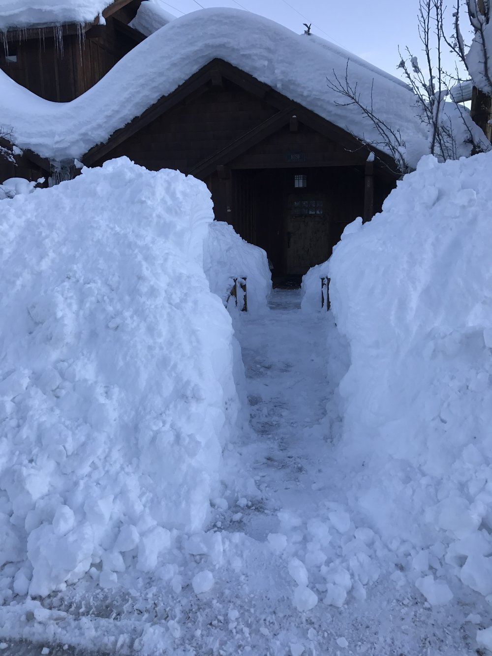 Digging out the front door
