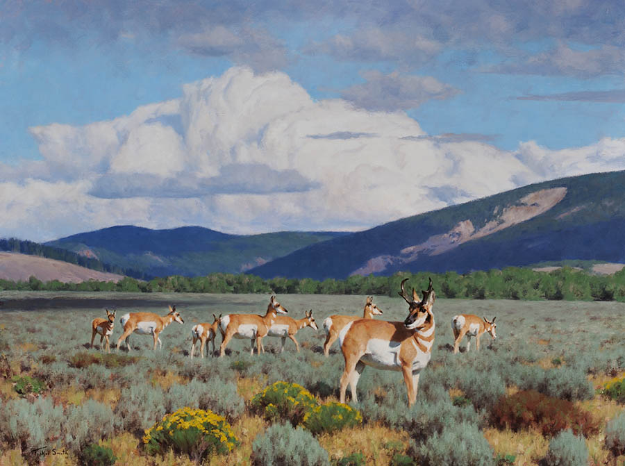Antelope Flats - 30x40 inches - SOLD