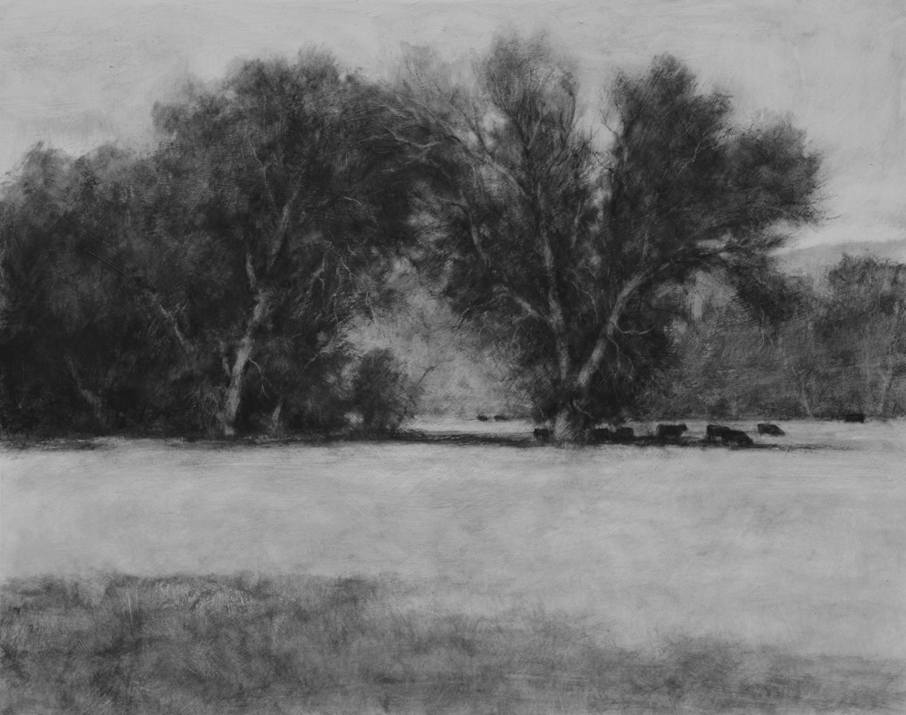 Good Pasture  - 16x20 inches, charcoal - $3,150