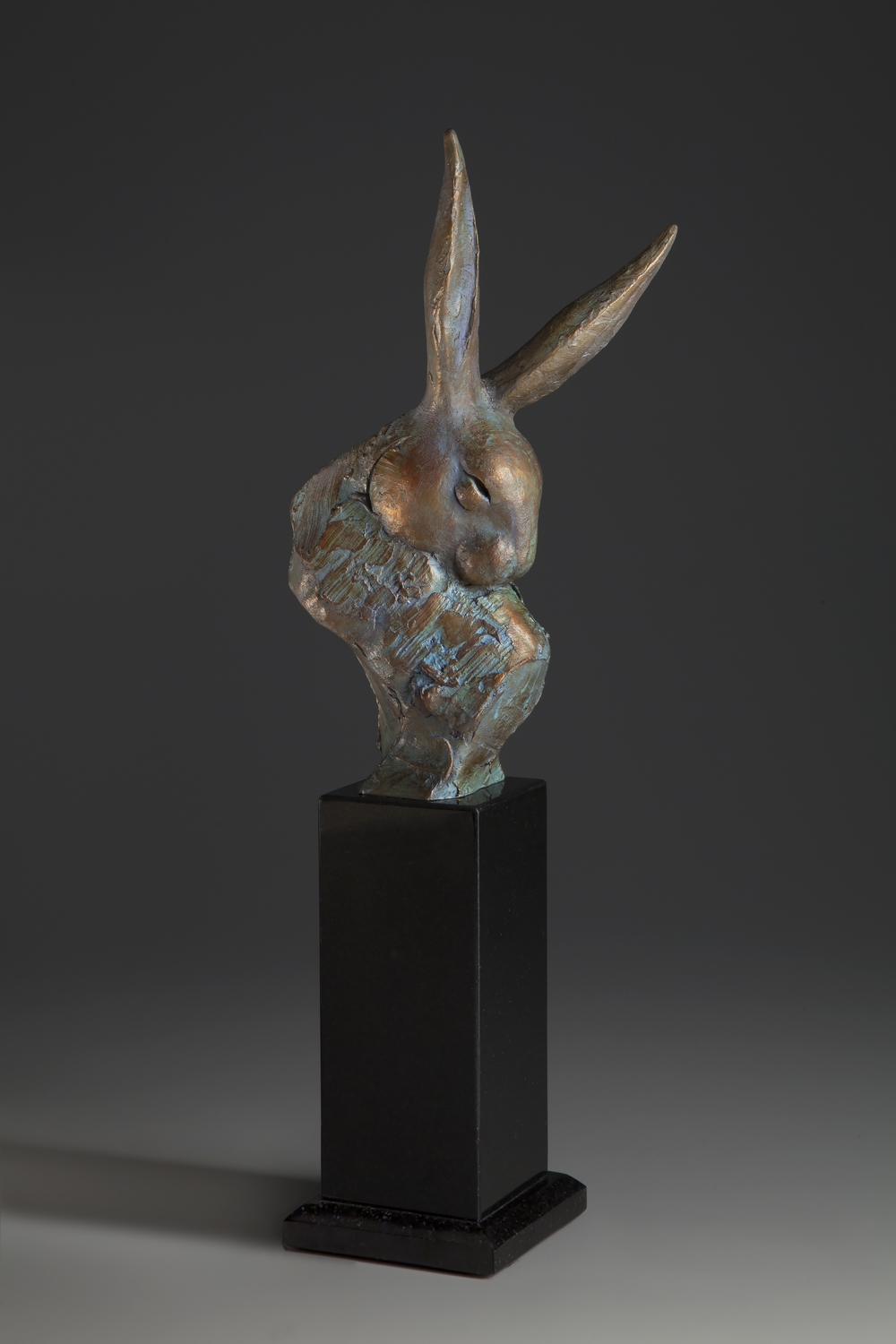 Rabbit Radar  - 19x8x5 inches - $2,400