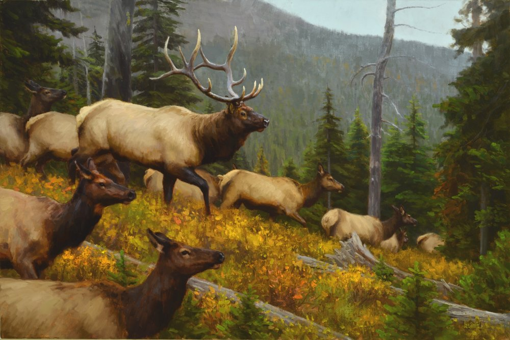 High Country Scramble    32 x 48 inches