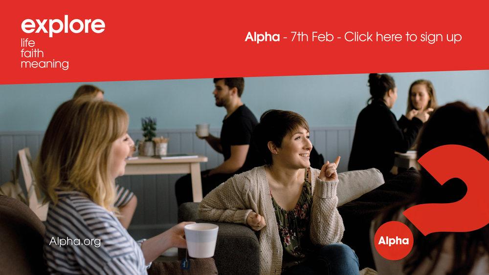 alpha-website3.jpg